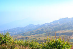 Phutabberk, montanha tailandesa Imagens de Stock