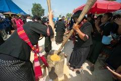 Phutai minority woman pounding rice. Stock Image