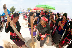 Phutai minority woman pounding rice. Stock Photo