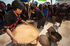 Phutai minority woman pounding and winnowing rice. KALASIN,THAILAND-MARCH 9 : Group of unidentified Phutai minority senior woman competitive pounding and Royalty Free Stock Photos