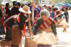 Phutai minority woman pounding and winnowing rice. KALASIN,THAILAND-MARCH 9 : Group of unidentified Phutai minority senior woman competitive pounding and Royalty Free Stock Photography