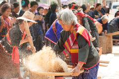 Phutai minority woman pounding and winnowing rice. Stock Images