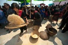 Phutai minority woman pounding and winnowing rice. Royalty Free Stock Photography