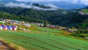 PHUTHAPBOEK PHETCHABUN THAILAND - OCTOBER 9 : Resorts and lodges Royalty Free Stock Image
