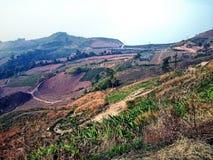 PhuThapBoek. PhetchabunProvince travel mountain relax royalty free stock photo