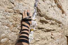 Free Phylacteries Wrapped Hand On The Western Wall Royalty Free Stock Image - 29886176