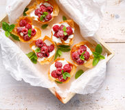Phyllo cups with Mascarpone cheese filling topped with raspberries, top view. Filo cups with Mascarpone filling topped with raspberries, delicious dessert stock images