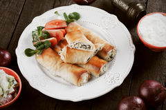 Phyllo pastry rolls with cheese and spinach Royalty Free Stock Photo