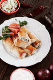 Phyllo pastry rolls with cheese and spinach Stock Images