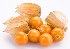 Physalis. On a white background stock images