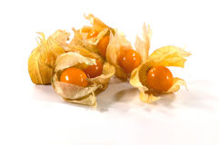 Physalis Foto de Stock