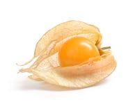 Physalis. Fruit isolated on white stock photos