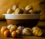 Physalis. Fruit in a brown bowl Royalty Free Stock Photo
