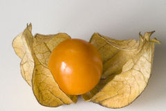 Physalis. Half open physalis royalty free stock images