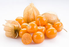 Physalis Stock Photos