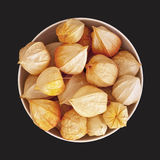 Physalis in the bowl Stock Photography