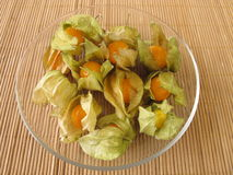 Physalis - Cape gooseberry Royalty Free Stock Image