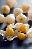 Physalis or Cape Gooseberry or Groundcherry Stock Photos
