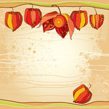 Physalis or Cape gooseberry in orange and in red on the textured beige background. Decorative autumn background. Royalty Free Stock Photos