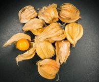 Physalis Cape gooseberry. Royalty Free Stock Image