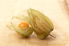 Physalis -  cape gooseberry Stock Images