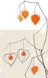 Physalis (chinese lantern) hearts Stock Photography
