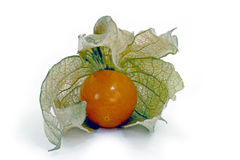 Physalis, a delicious tropical fruit Stock Photo