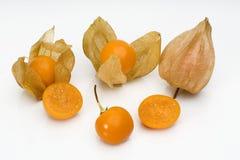 physalis för 2 frukt Fotografering för Bildbyråer