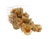 Physalis falling from the container Stock Photography