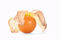 Physalis, fresh fruit Stock Images