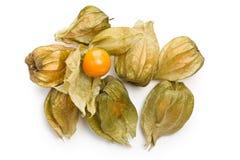 Physalis fruit Stock Images