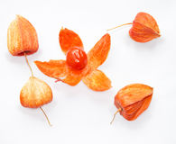 Physalis fruit Stock Photo