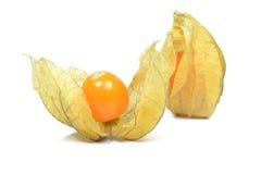 Physalis fruit Royalty Free Stock Photo
