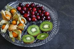 Physalis fruit - Cape gooseberries with cranberries and kiwi royalty free stock photography