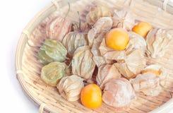 Physalis fruit Royalty Free Stock Photos