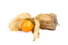 Physalis fruit (cape gooseberry) Royalty Free Stock Photo