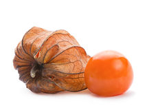 Ripe Physalis Stock Images