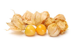 Physalis fruit Royalty Free Stock Image