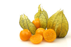 Physalis fruit (Physalis peruviana) Royalty Free Stock Image