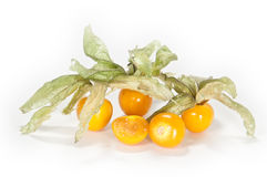 Physalis fruits. Physalis with cutted fruits in front stock photos