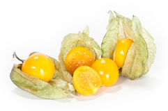 Physalis fruits. Physalis with a cutted fruit in front royalty free stock images