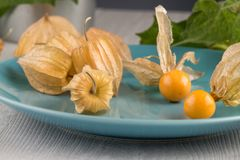 Physalis fruits. On blue ceramic plate and a wooden table Stock Photo