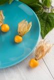 Physalis fruits Royalty Free Stock Photos