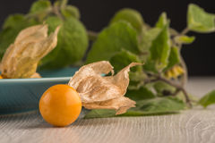 Physalis fruits. On blue ceramic plate and a wooden table Stock Photos