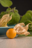 Physalis fruits. On blue ceramic plate and a wooden table Royalty Free Stock Images