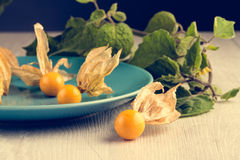 Physalis fruits. On blue ceramic plate and a wooden table Royalty Free Stock Image