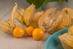 Physalis fruits. On blue ceramic plate and a wooden table Royalty Free Stock Photo