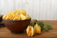 Physalis fruits Stock Image