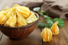 Physalis fruits Royalty Free Stock Photos