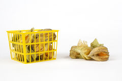 Physalis fruits in and out of a plastic basket Royalty Free Stock Image